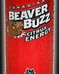 Beaver Buzz: DAM GOOD?
