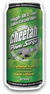 cheetah-power-surge